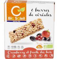 BARRES CÉRÉALES CRANBERRIES ET FRUITS DES BOIS 125 G